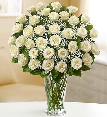 Ultimate Elegance Premium Long Stem White Roses