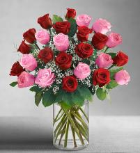 Long Stem Pink & Red Roses