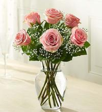 Loves Embrace Pink Roses